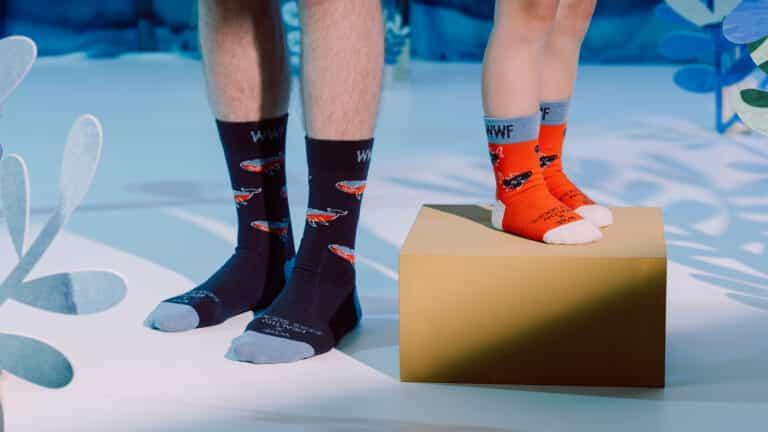WWF x Healthy Seas Socks limited edition collectie